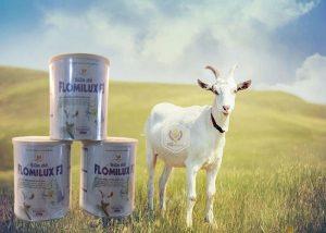 Sữa Dê Flomilux F3 Giúp Phục Hồi Sức Khỏe Cho Người Mới Ốm Dậy