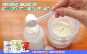 Sữa Công Thức Là Gì?